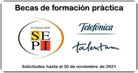 Becas Telefónica Talentum 2021, Fundación SEPI