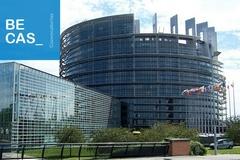 Becas Schuman. Prácticas en el Parlamento Europeo